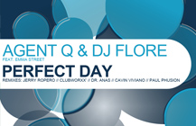 Agent Q & DJ Flore – Perfect Day